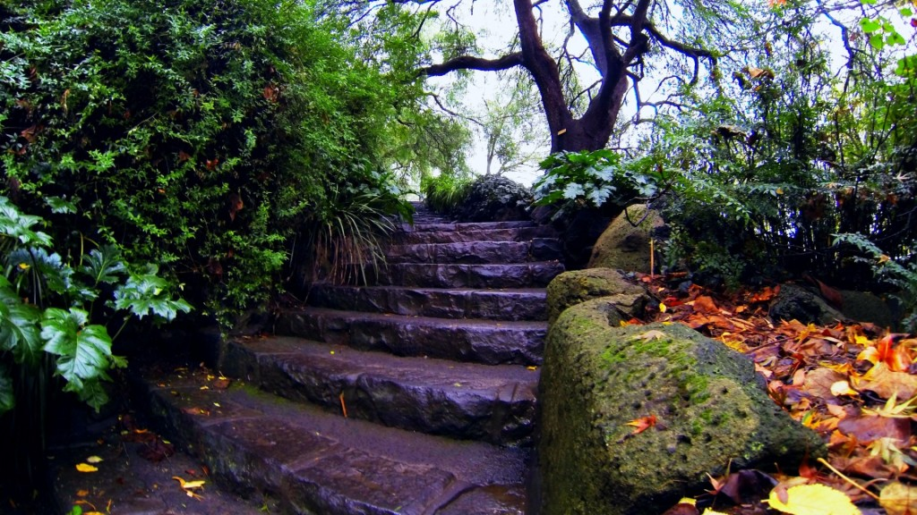 rock-stair-garden-autumn-falling-leaves